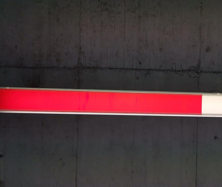 Lampenfolie Transparent Rot Chamäleon